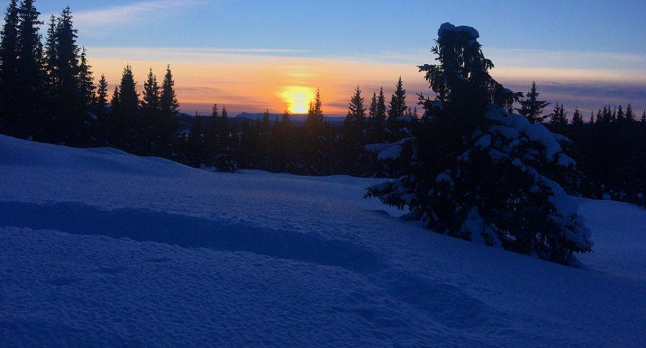 Solnedgang og stjernehimmel sees aller best uten tilleggslys.